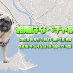 今年で5年目!湘南HANAPECHA YAを開催します