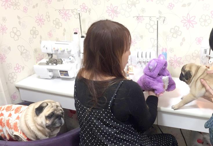 HANAPECHA YAの犬服教室 開講のご案内