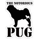 THE NOTORIOUS PUG